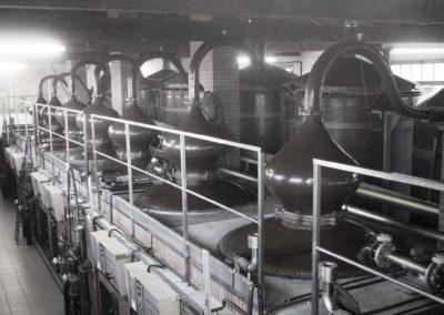 Recrutement Responsable Commercial et Administratif Spiritueux H/F à Cognac